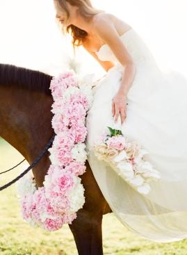 equestrian_bride