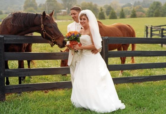 Black Horse Inn Best Pictures 016